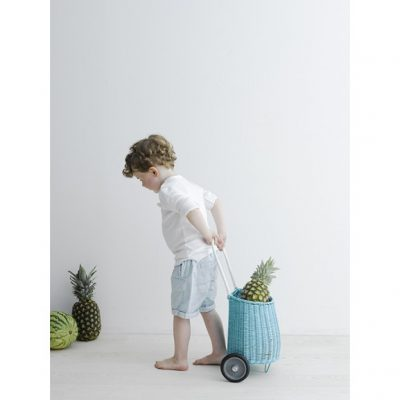 Baby Blue Luggy, pull along storage basket