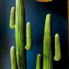 Artificial Faux Cactus