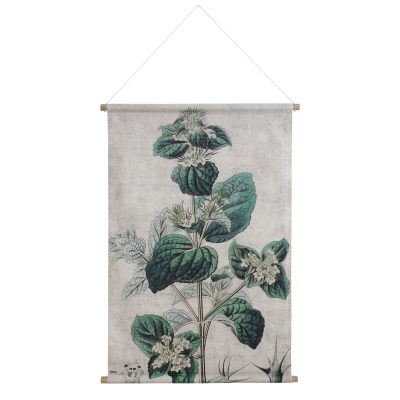 XL Botanical Wall Chart