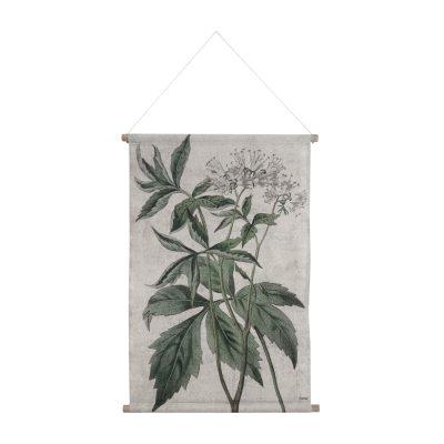 Botanical Wall Chart in Medium