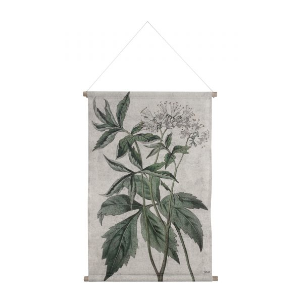 Botanical Wall Chart in Medium