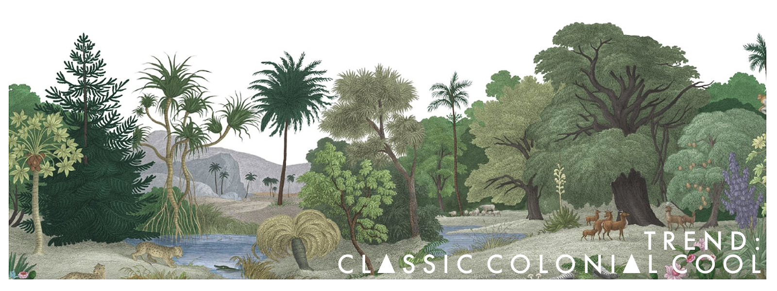 New Collection Classic Colonial cool