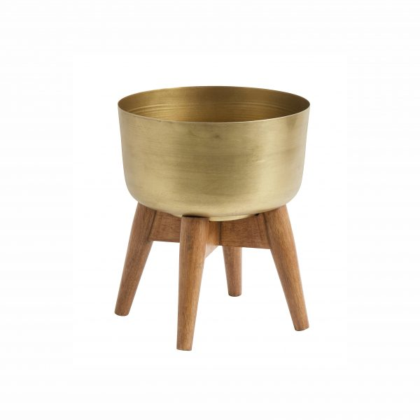 Small Mango wood and brass planter on stand