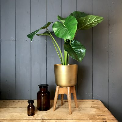 Mango Wood and Brass Planter on a Stand - Medium