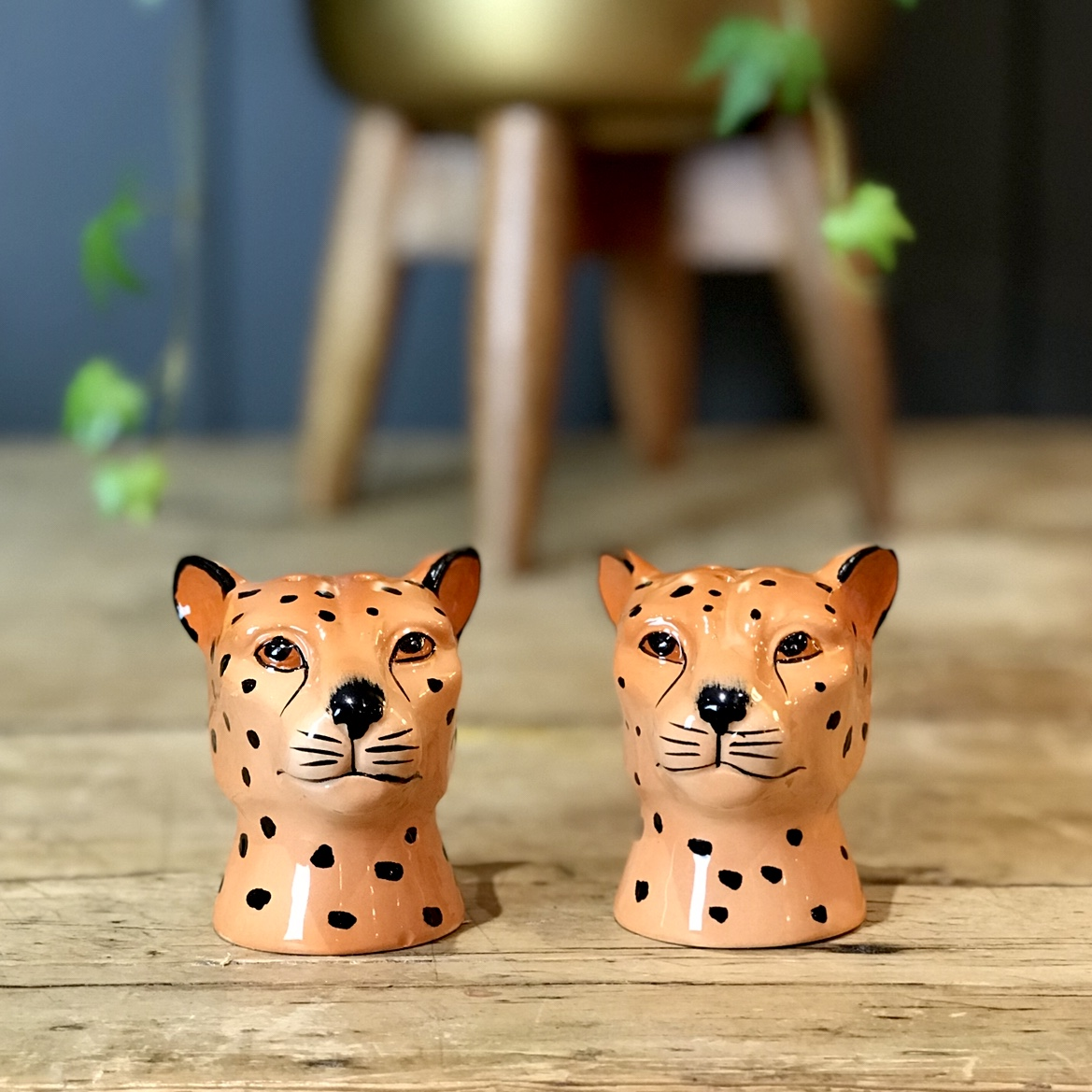 Salt And Pepper Shakers Leopard Love Frankie