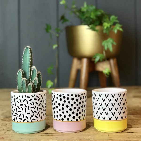 Mini Pastel Planters