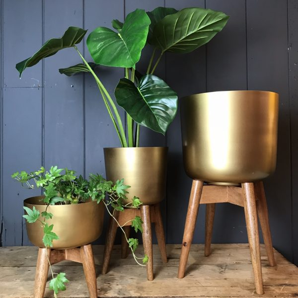 Mango Wood and Brass Planter on a Stand - Large