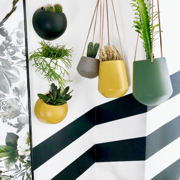 Collection of stylish matt planters