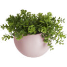 Round wall hung ceramic planter in Pink