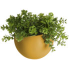Wall Hung Ceramic Planter in Black, Mustard or White