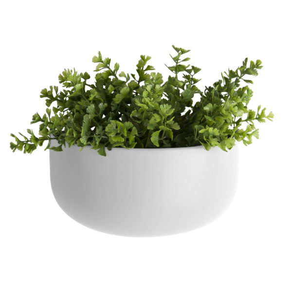 Wide Oval Wall Planter - Black or White