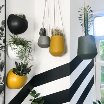 Collection of stylish matt planters