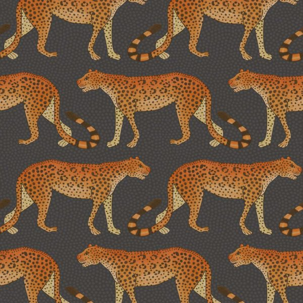 Cole & Son Ardmore Collection: Leopard Walk - 109/2008 Charcoal and Orange