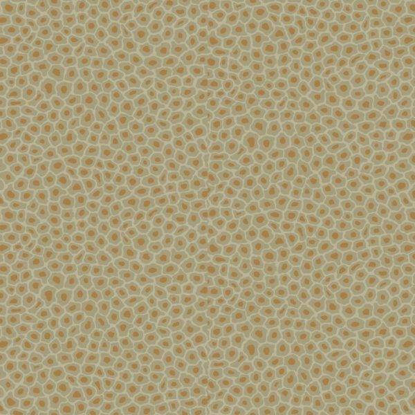 Cole & Son Ardmore Collection Senzo Spot Wallpaper - Olive - 6029