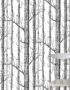 Cole & Son New Contemporary: The Woods Wallpaper Black & White 69/12147