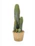 Faux Cereus Potted Cactus