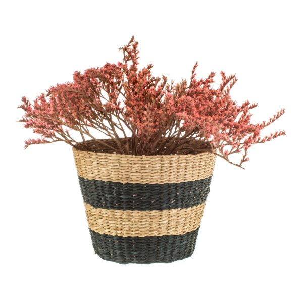 Black and Natural Striped Seagrass Planter with Plant