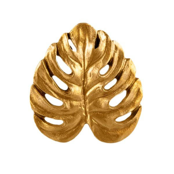 Cheese Plant Leaf in Gold Front View