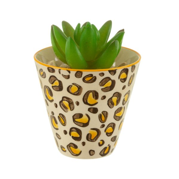 Mini Leopard Print Planter with Plant Cut Out White Background