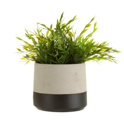 Grey Cement Planter with Black Dipped Effect