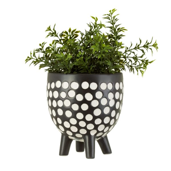 Monochrome Spotty Planter with Plant Cut Out White Background