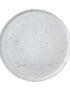 Artisan Speckled Dinner Plate in White