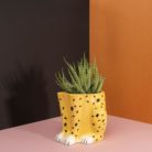 Cheeky Cheetah Plant Pot