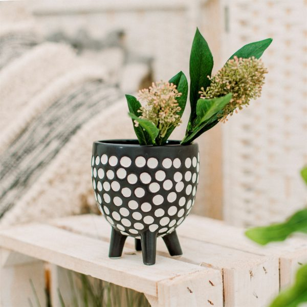 Monochrome Spotty Planter Life Style Photo