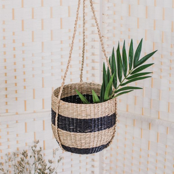 Stripy Seagrass Hanging Basket Life Style