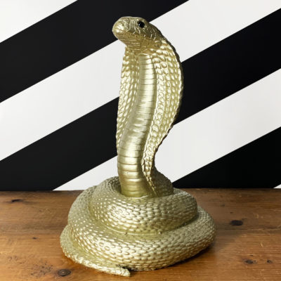 Snake Money Box in Black or Gold