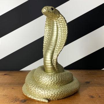 Snake Money Box in Black or Gold