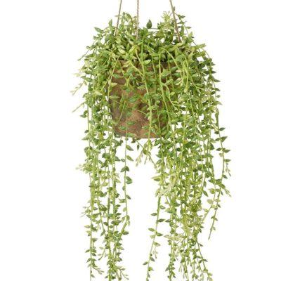 Faux Senecio Hanging Plant