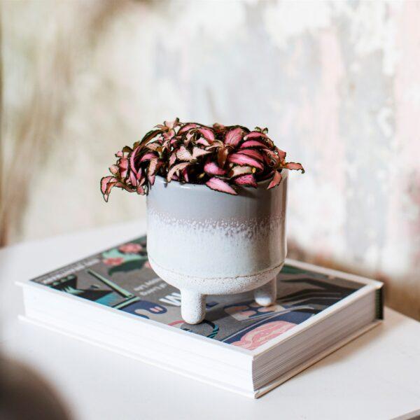 Mini Grey Glazed Planter