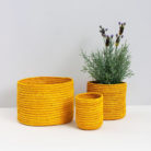 Mustard Yellow Raffia Baskets
