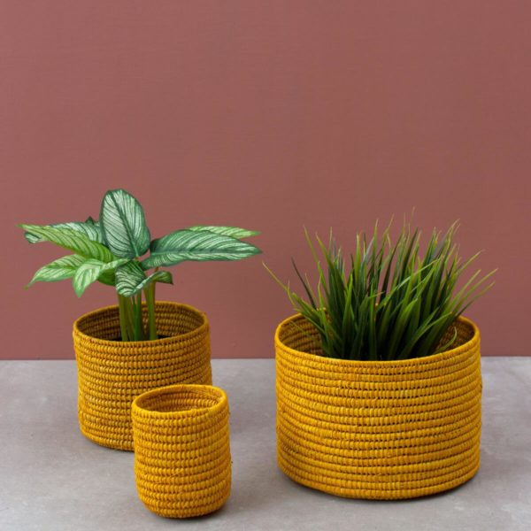 Mustard Yellow Raffia Baskets