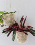 Palm Leaf Hanging Baskets