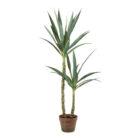 Faux Yucca Jungle Plant