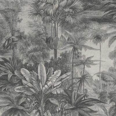 Rainforest Charcoal Close Up